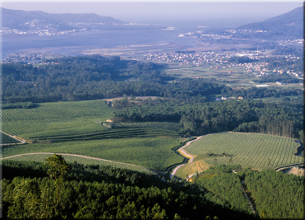 Landschaft in Rias Baixas
