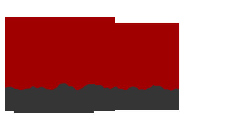 LaVina Logo
